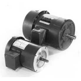 Marathon Motors Metric Motors, 3 Phase, TEFC, C-Face Footless Mount