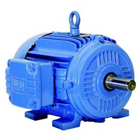 WEG General Purpose Motors, NEMA Premium Efficiency, 3 Phase, TEFC, Rigid Mount, Under 100 HP