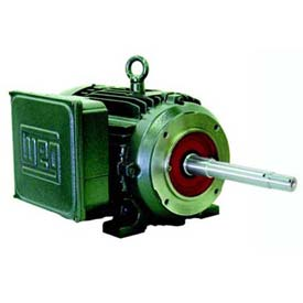 WEG Close-Coupled Pump Motors, Type JP, Under 10 HP