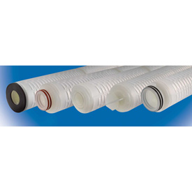 Polyethersulfone High Purity Replacement Cartridges