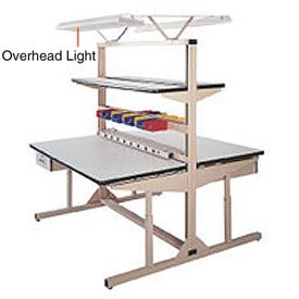 Overhead Light Kit for Double Sided Flexline Unit