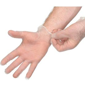 Disposable Vinyl Gloves - Powdered Large