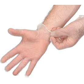 Disposable Vinyl Gloves - Powder-Free, Large, Clear, 100/Box