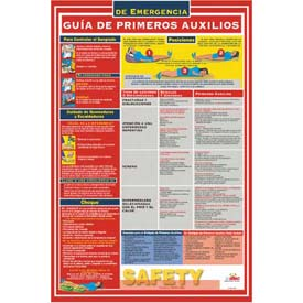 Poster, First Aid Guide (Spanish), 18 x 24