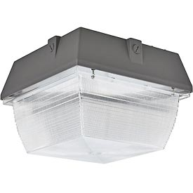 Global™ LED Canopy Light, 100W, 8100 Lumens, 5000K, Surface Mount