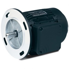 Baldor Metric Motors w/3 Phases