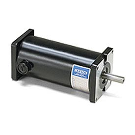 Leeson DC Motors, Sub-FHP, Low Voltage (12&24V)