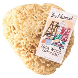 Natural Sea Wool & Yellow Painting Sponges