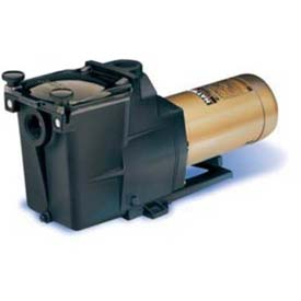 Inground Swimming Pool Pumps