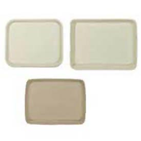 Disposable Food & Serving Trays