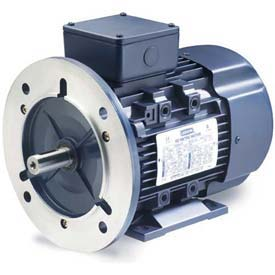 3-Phase IEC Metric Motors
