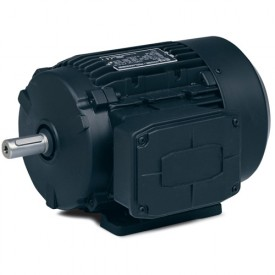 Baldor 3 Phase Metric Motors