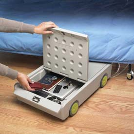 Mobile Locking Personal Storage Boxes