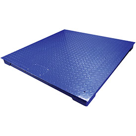 Adam Equipment PT312-10 4' x 4' Platform Scale, 1000lb x 2lb/4500kg x 1kg, Blue by