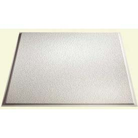 Genesis Stucco Revealed Edge PVC Ceiling Tile 770-00, Waterproof & Washable, 2'L X 2'W, White