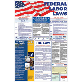 """Federal Law Poster, 24"""" x 36"""""""
