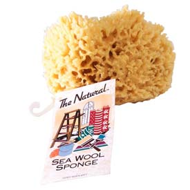 "5-6"" Natural Sea Wool Sponge, #1 Cut - 12 Pack"