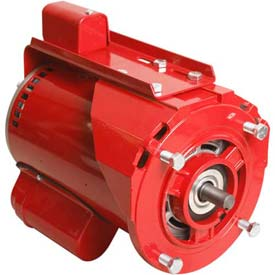 "Alltemp CP-R1463, 6.5"" Dia. X 9.5""L Hot Water Circulator Pump Motor w/ Ball Bearings - 1 HP, 9.6A"