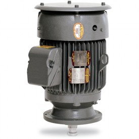 Baldor Motor VHECP4313T, 75HP, 3550RPM, 3PH, 60HZ, 365HP, 1464M, TEFC, F