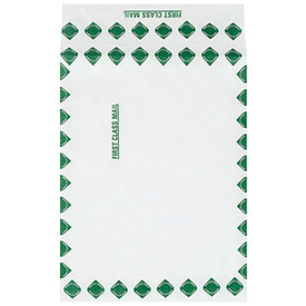 "12"" x 16"" x 2"" First Class Expandable Tyvek Envelopes 100 Pack by"
