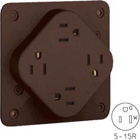 Bryant 1254HB QUADPLEX®Receptacle, 15A, 125V, Brown, Hospital Grade