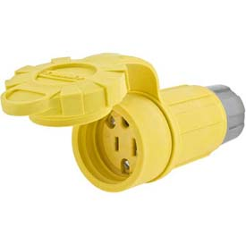 Bryant 15W07BRY Watertight Connector, CRWFT N-NEMA 15A/125V/10A/250V