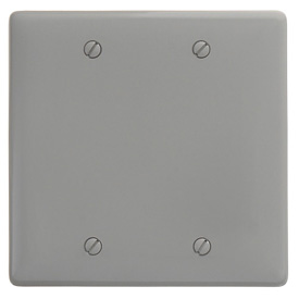 Bryant NP23GY Box Mounted Blank Plate, 2-Gang, Standard, Gray Nylon