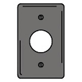 Bryant NP7GY Single Receptacle Plate, 1-Gang, Standard, Gray Nylon, 1.40 open