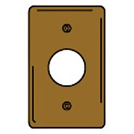 Bryant SB7 Single Receptacle Plate, 1-Gang, Standard, Brass, 1.40 open