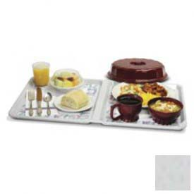 "Buy Dinex DX1089MOC23 Meals On Command Patient Tray, 23""x13-1/2"", 20/Cs, Gray"