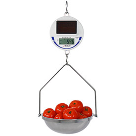 Detecto Solar Powered Hanging Scale 30Lbs x 0.02Lbs Legal for Trade