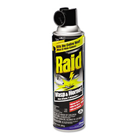 Raid® Wasp & Hornet Killer, 14 Oz. Aerosol 12/Case - 668006
