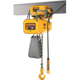 NER Electric Chain Hoist w/ Motor Trolley - 3 Ton, 15' Lift, 17 ft/min, 460V