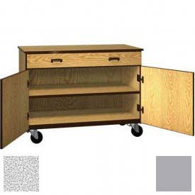 "Mobile Wood Cabinet, 1 Drawer 1 Shelf, Solid Door, 48""W x 22-1/4""D x 36""H, Cactus Star/Grey"