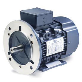 Leeson Motors Motor IEC Metric Motor-.5HP, 230/460V, 1695/1380RPM, IP55, B3/B5, 1.15 SF, 74 Eff.