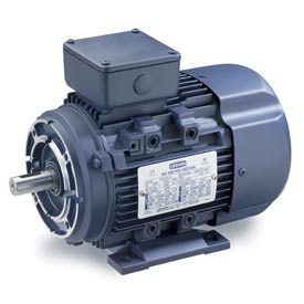 Leeson Motors Motor IEC Metric Motor-.5HP, 230/460V, 1695/1380RPM, IP55, B3/B14, 1.15 SF, 74 Eff.