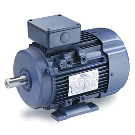 Leeson Motors Motor IEC Metric Motor-4.0HP, 575V, 1740RPM, IP55, B3, 1.15 SF, 85.5 Eff.