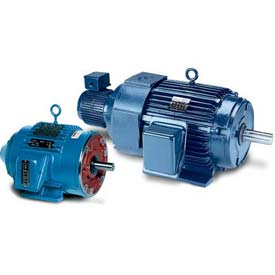 Leeson Motors 3-Phase Inverter Duty Motor 60HP,1180RPM,404TC,TEBC,230/460V,3PH,60HZ,Tstat,40C
