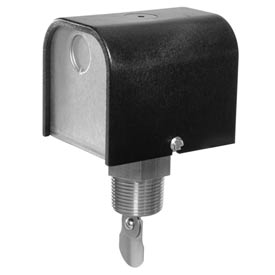 """FS254 Flow Switch 1"""" NPT With Paddles"""