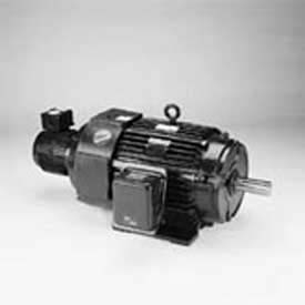 Marathon Motors Inverter Duty Motor, Y570, 286THFNA8028, 30HP, 230/460V, 1800RPM, 3PH, 286T, TEFC