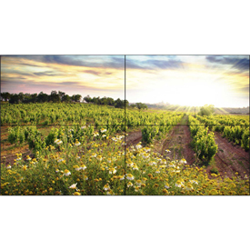 "Buy NEC Display 55"" LED-Backlit Ultra-Narrow Bezel TileMatrix Video Wall Solution"