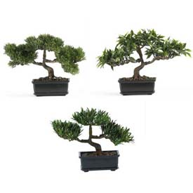 Nearly Natural 12'' Bonsai Silk Plant Collection (Set of 3)