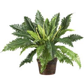 Nearly Natural Marginatum with Wicker Basket Silk Plant