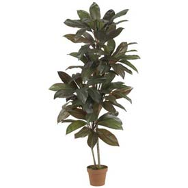 Nearly Natural 5' Cordyline Silk Plant