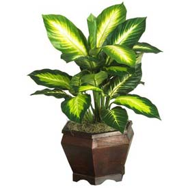 Nearly Natural Golden Dieffenbachia with Wood Vase Silk Plant