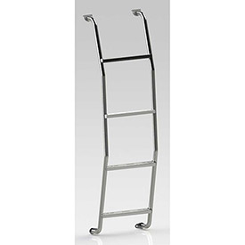 Rear Van Door Ladders