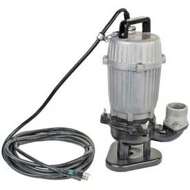 Submersible Water & Trash Pumps