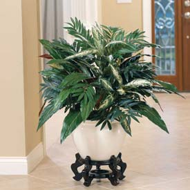 "OfficeScapesDirect 32"" Aspidistra & Chinese Evergreen Silk Plant"