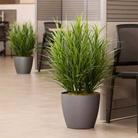 "OfficeScapesDirect 34"" Grass Silk Plant"