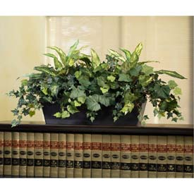OfficeScapesDirect Mixed Chinese Evergreen & Ivy Cubicle Silk Plant